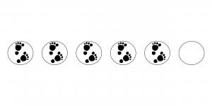 5 modspor